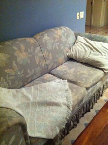 My 23 year old comfy couch