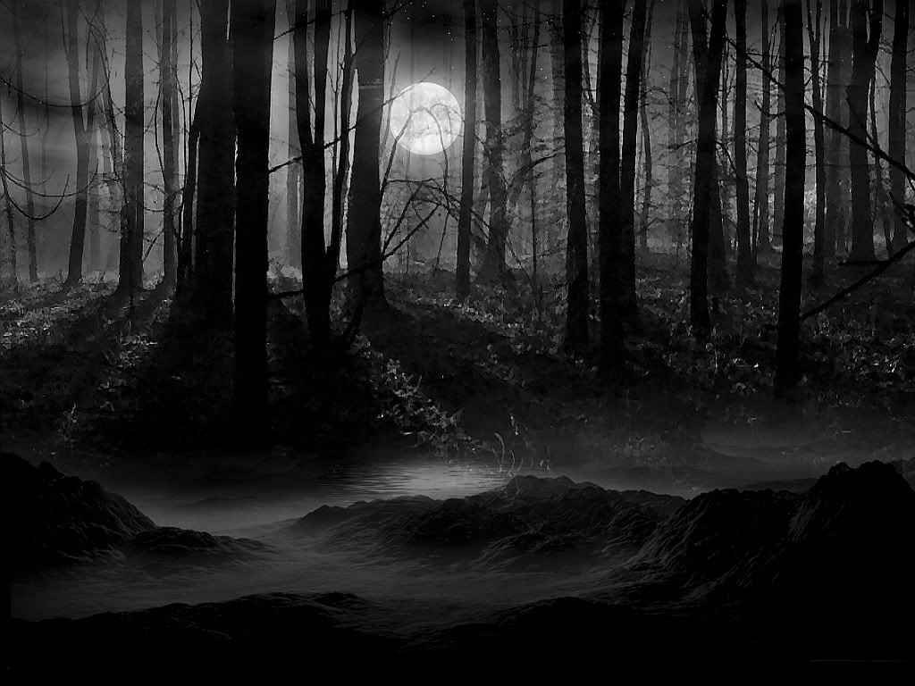 dark-woods-in-moonlight_116287